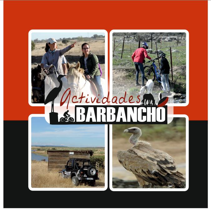 Actividades Barbancho - Rutas y Experiencias en Cáceres