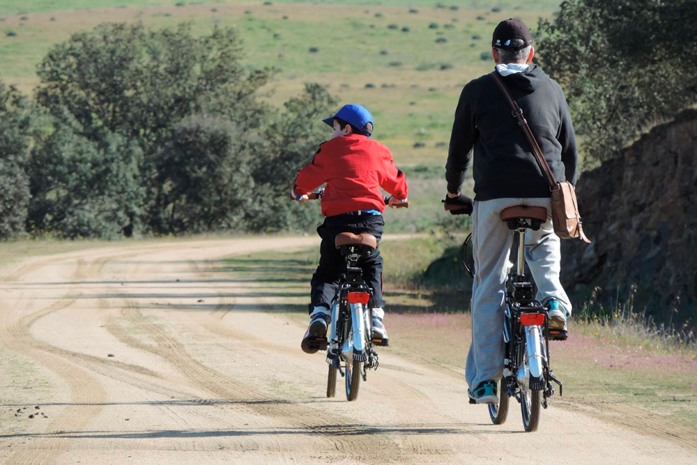 Rutas en bicicletas con servicio de alquiler