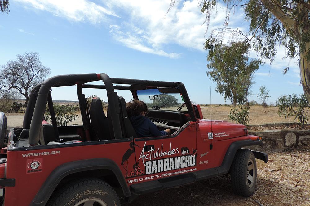 Excursiones a la dehesa extremeña con vehículo propio