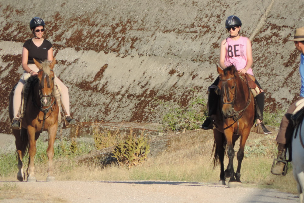 Paseos a caballo en Cáceres